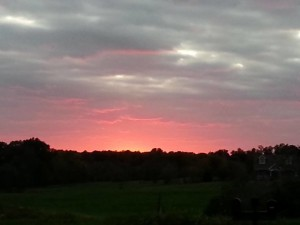 2014 Sunset October 4