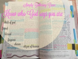 bible-380846_640