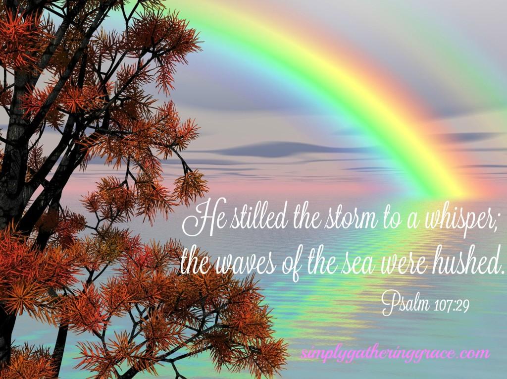 rainbowautumn
